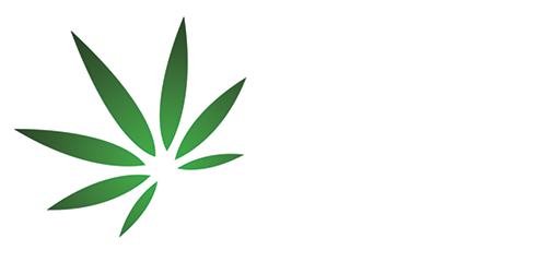 cbd oil toronto